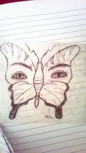 eyes of a butterfly