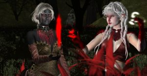 Forest of Red Magics