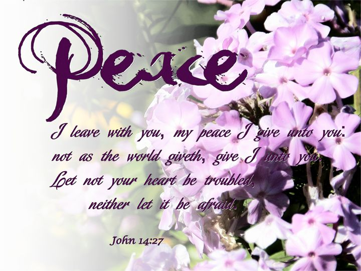 Peace - ibelieveimages