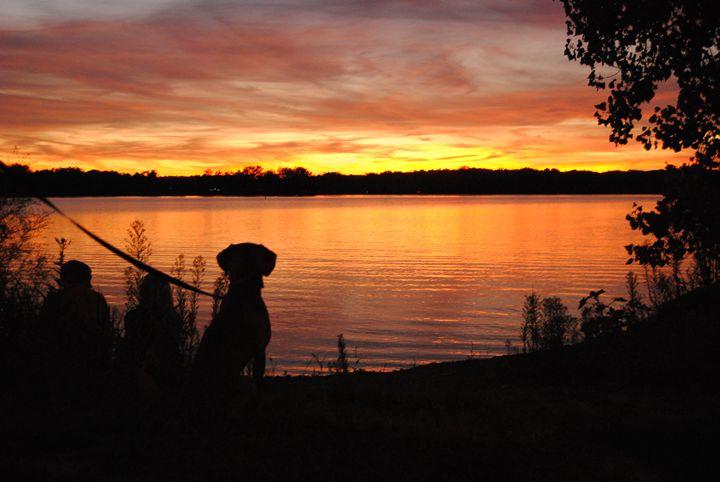 Dog and Sunset - Shawna Hunter