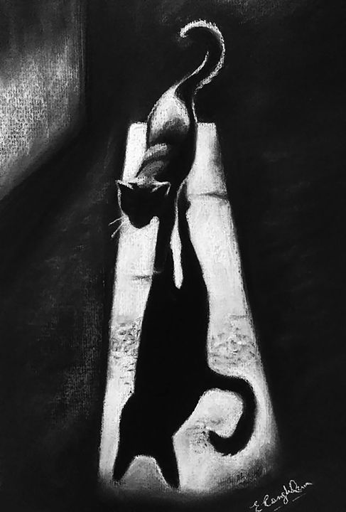 Shadow of a Cat - Elaine_FineArt