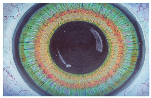 Eye - Kyra Coates Art