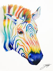 The Rainbow Zebra