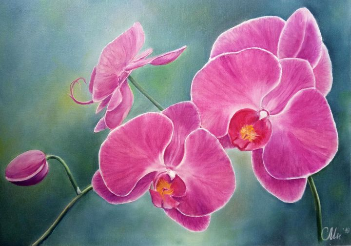 Phalaenopsis Orchid - Paintings With Love