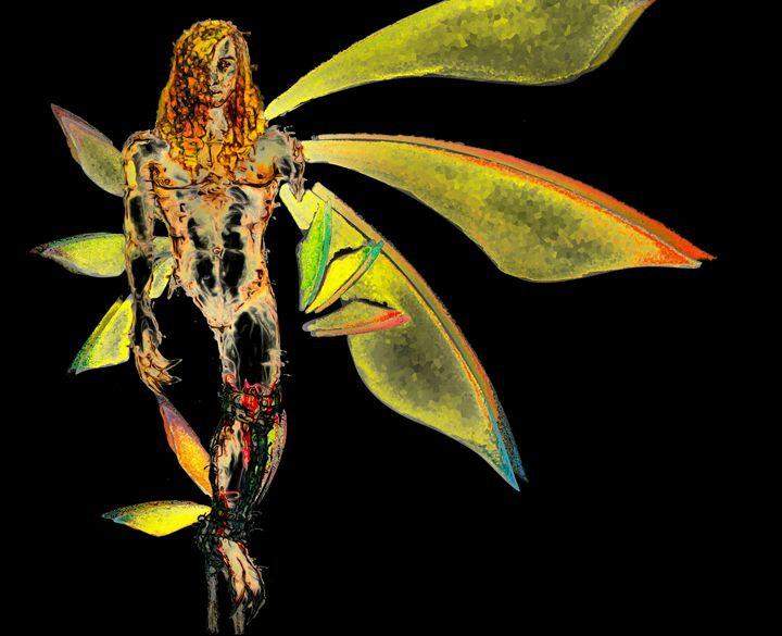Lilith basic blk - Northnode Rider