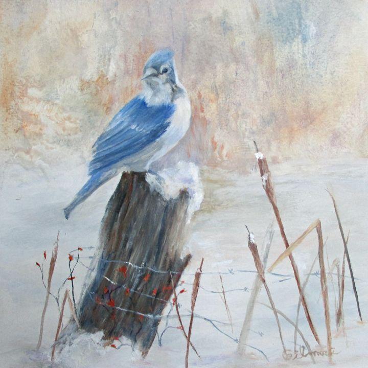 BLUE JAY IN WINTER - Gilmore Fine Art