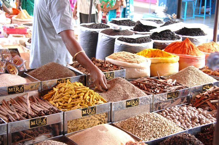 spice seller Goa India - james p connor
