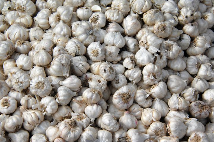 Garlic Bulbs Goa India - james p connor