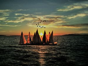 Sailing boats in sunset