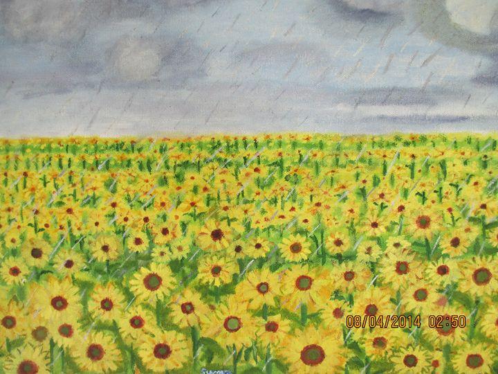 Rain on sunflower - Art for Peace