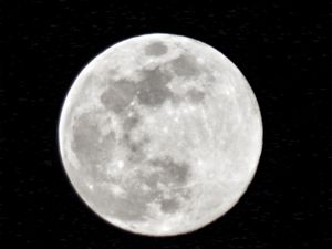 Breathless moonlight
