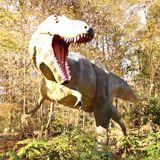 T-Rex Dinner's Here!