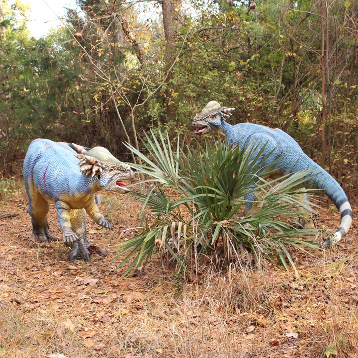 Dinosaur Siblings Fighting Again - Klacey's Photography & Gifts