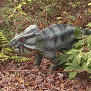 Peek-a-Boo Dinosaur