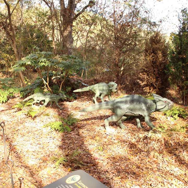Dinosaur Day Out - Klacey's Photography & Gifts