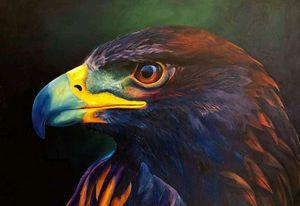 The colored eagle