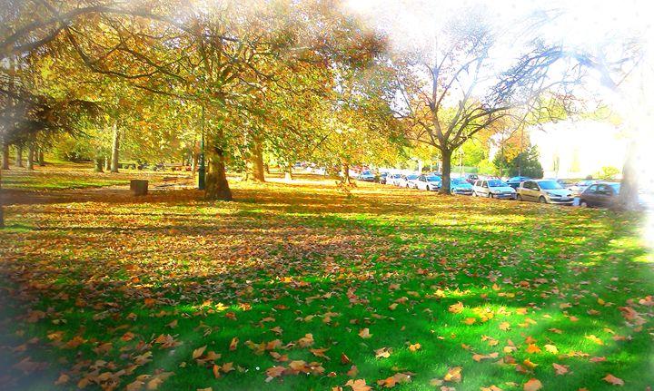Autumn paysage - Bluestone