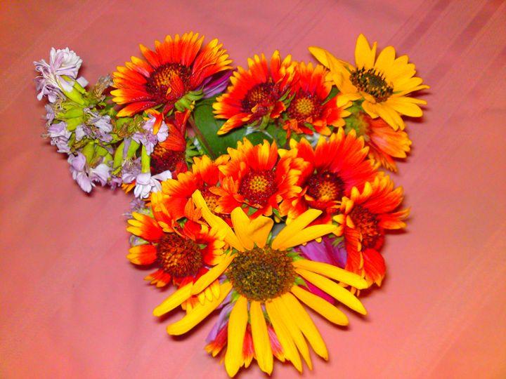 Gaillardia Flower Mix - Gareth Store