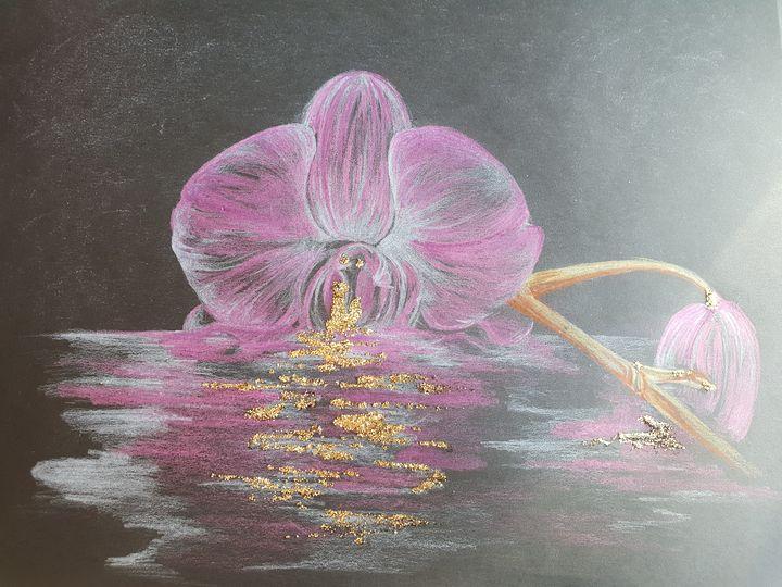 L orchidee - Michele bussola