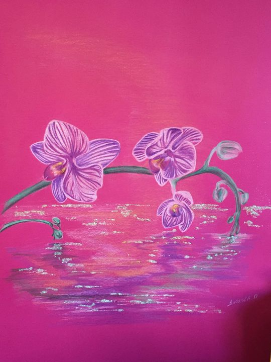 Orchidee - Michele bussola
