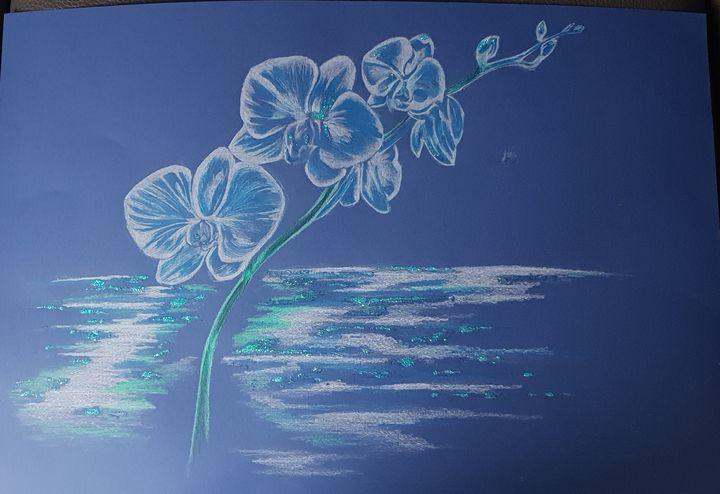 Orchidee bleu sur fond bleu - Michele bussola