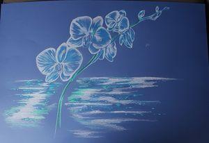Orchidee bleu sur fond bleu