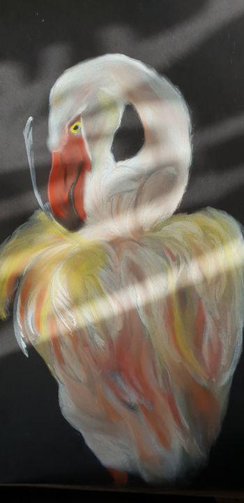 Flamand tout en couleur - Michele bussola