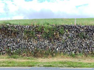 wall no.3