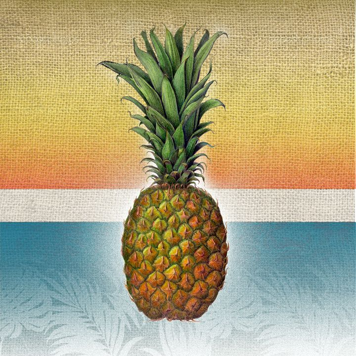 Miami Pineapple - William Gonzalez