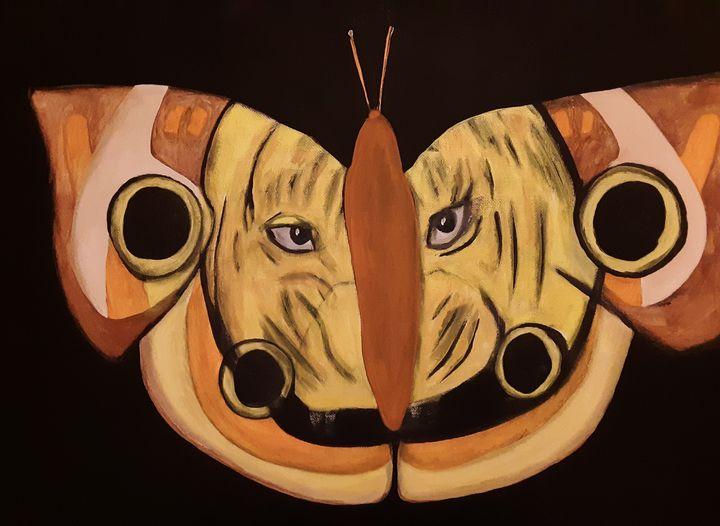 Tiger Moth - Shamus Blues