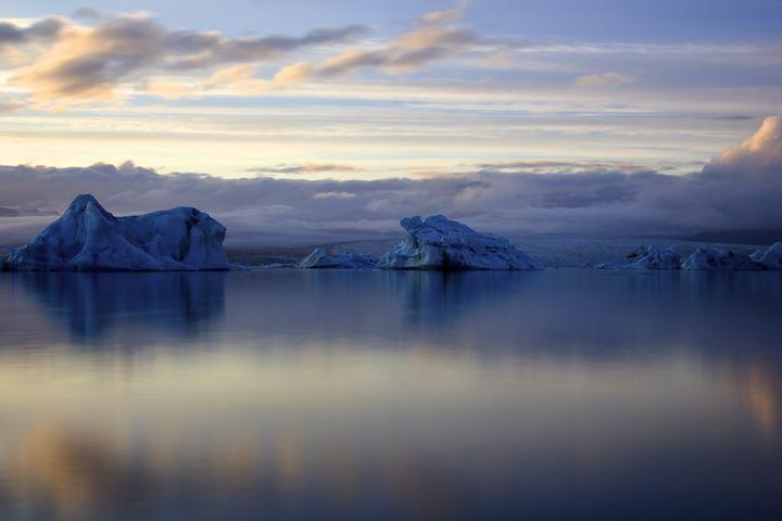 Ice sculptures - Pictures