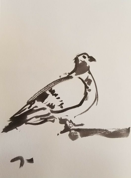 Jose Trujillo Ink Wash Pigeon - Jose Trujillo Fine Art