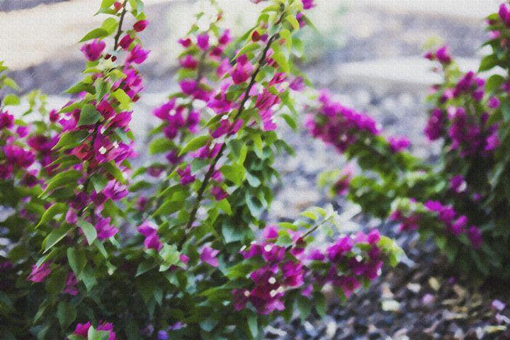 Summer Flowers - Scenics