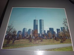 Twin Towers photograph
