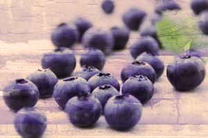 Food culture blueberries the healty