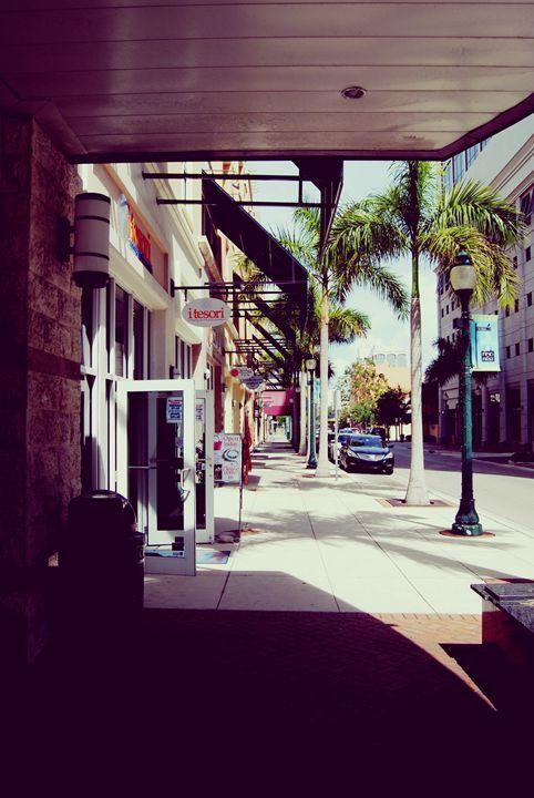 Streets of sarasota - Octopusiscool