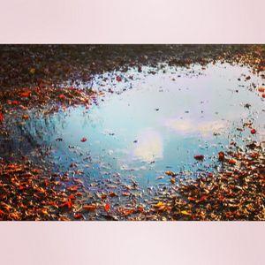 Autumn Cloud Reflection