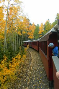 Autumn Train