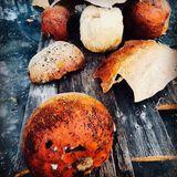 Abstract dried pumpkin shell