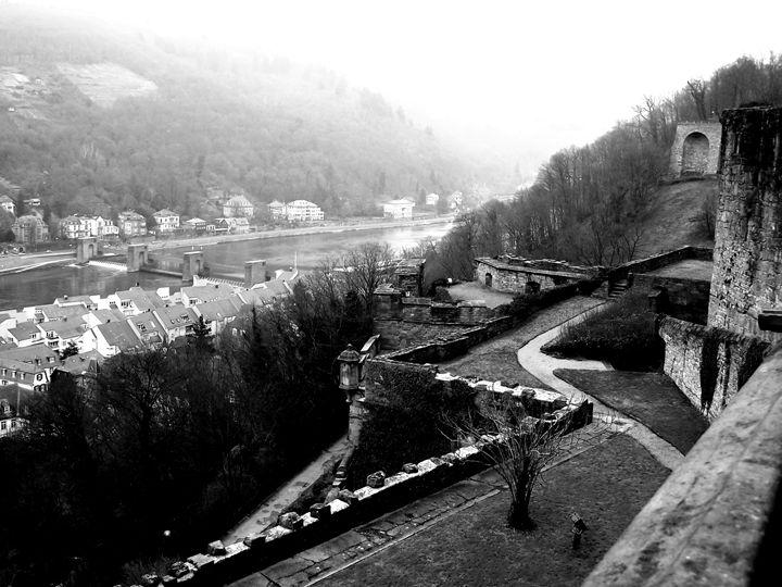 A View From Heidelberg Castle - Kayla Tice
