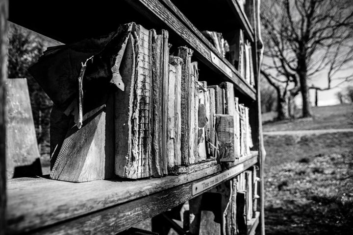 black and white book case - Mandi May photography