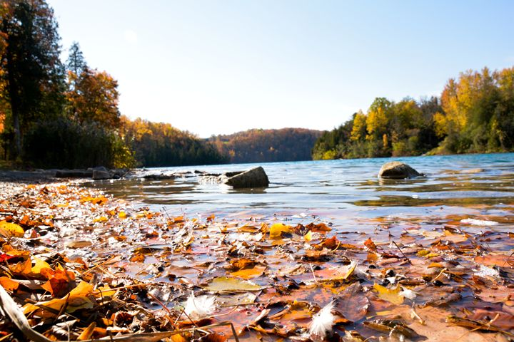 Fall on the lake - Mandi May photography