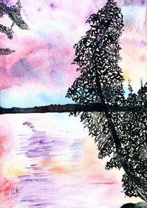 Skeleton Lake Cedar and Pink Skies