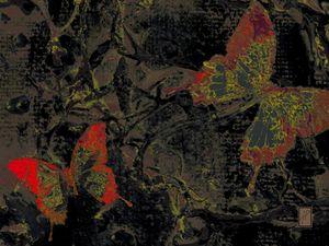 Papillons3  Mariposas3  Butterflies3