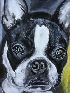 Le Bulldog