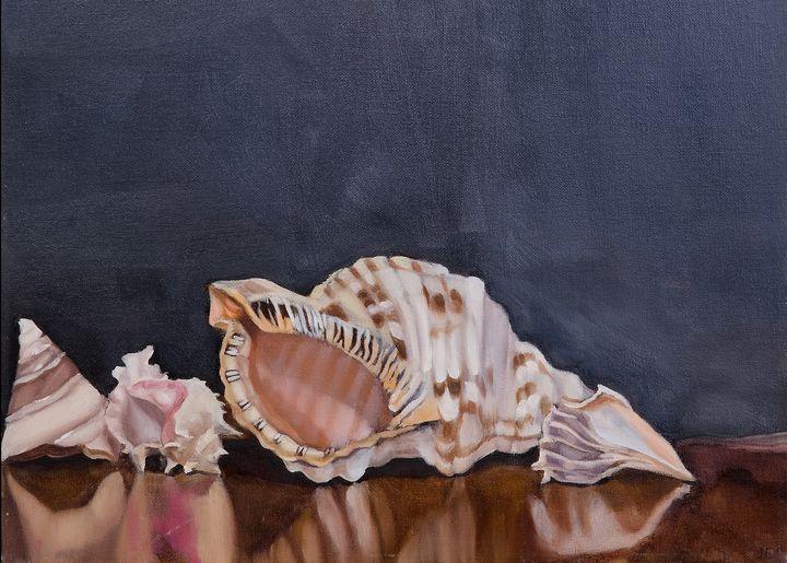 Four Shells - J Eneas Art