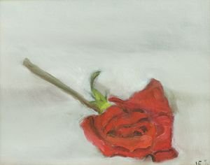 Wilted Red Rose