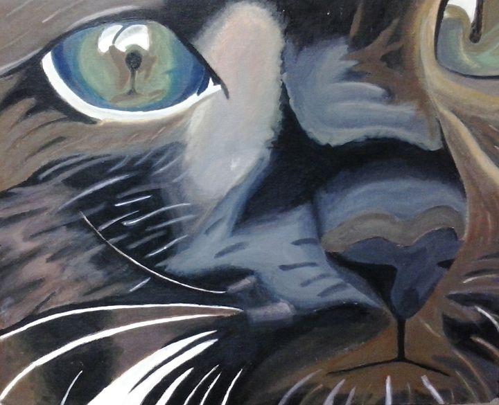 Holy Kitty - Cat's Corner