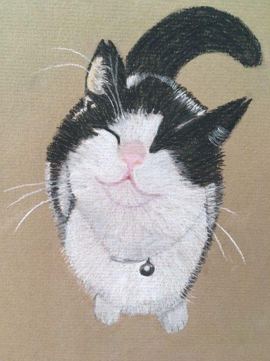 Cheeky girl! - Nicola's Perfect Pets