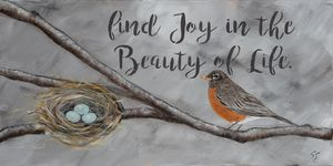 Find Joy in the Beauty of Life